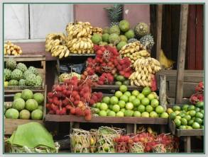 Fruits 23