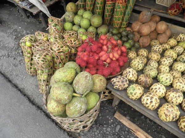 fruits 39