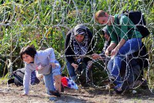 Une famille de migrants se faufile sous la clôture de barbelés installée à la frontière entre la Serbie et la Hongrie, le 28 août. ATTILA KISBENEDEK / AFP