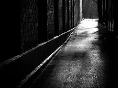 Flickrhivermind 11
