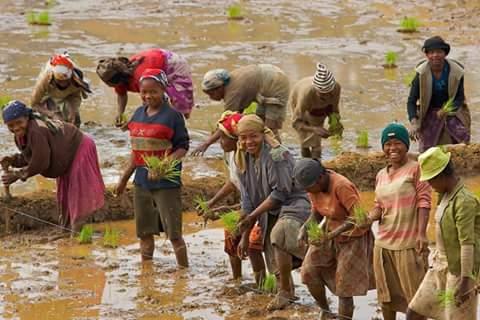Malagasy ve ianao Tsiky