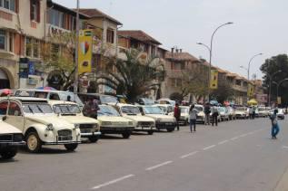 Omavet Taxi12